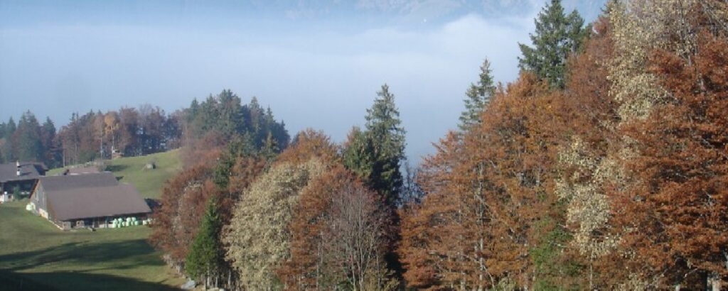 Herbst auf der Sonnenterasse Haldi