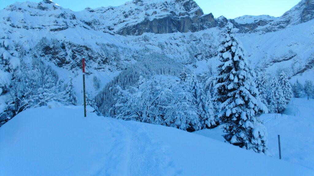 Schneeschuhrouten, Schlittelplausch Haldi