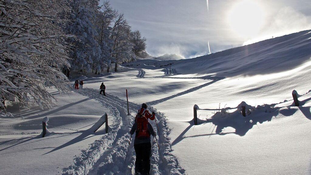 Schneeschuhwandern Haldi