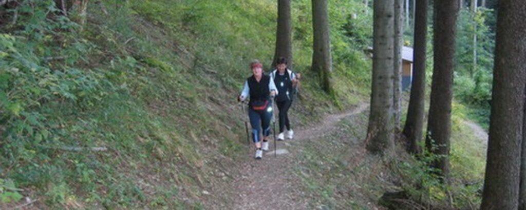 Haldi Walking-Paradies